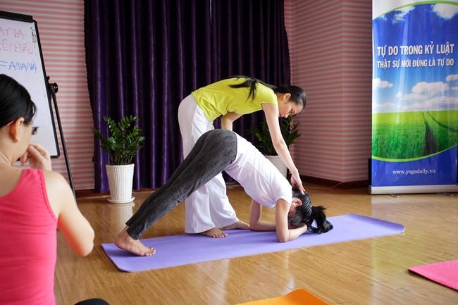 học yoga cơ bản