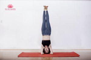 tập yoga đúng