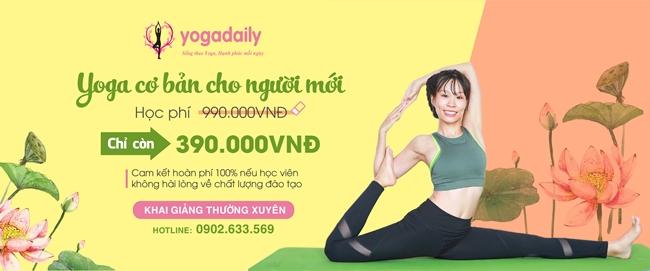 yoga cơ bản dành cho người mới