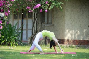 Khóa học Yoga nâng cao
