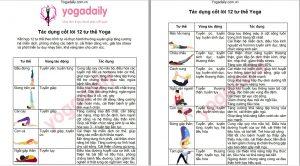 12-asanas-yoga-co-ban-yogadaily