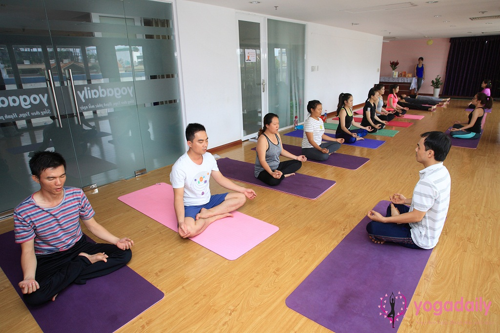 huấn luyện viên yoga yogadaily